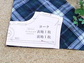 rshi-b1 (8).JPG
